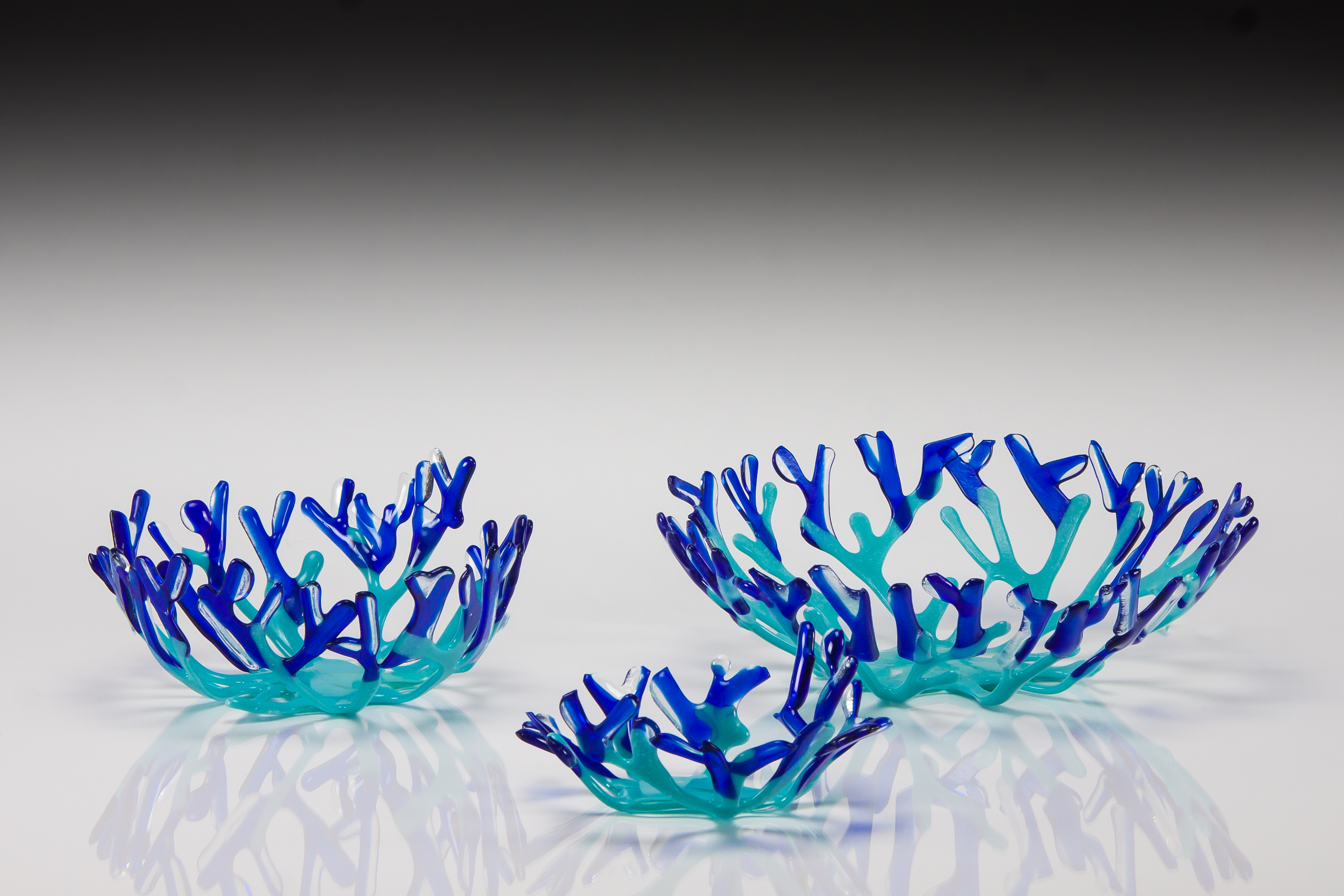Blue Coral Bowl Set