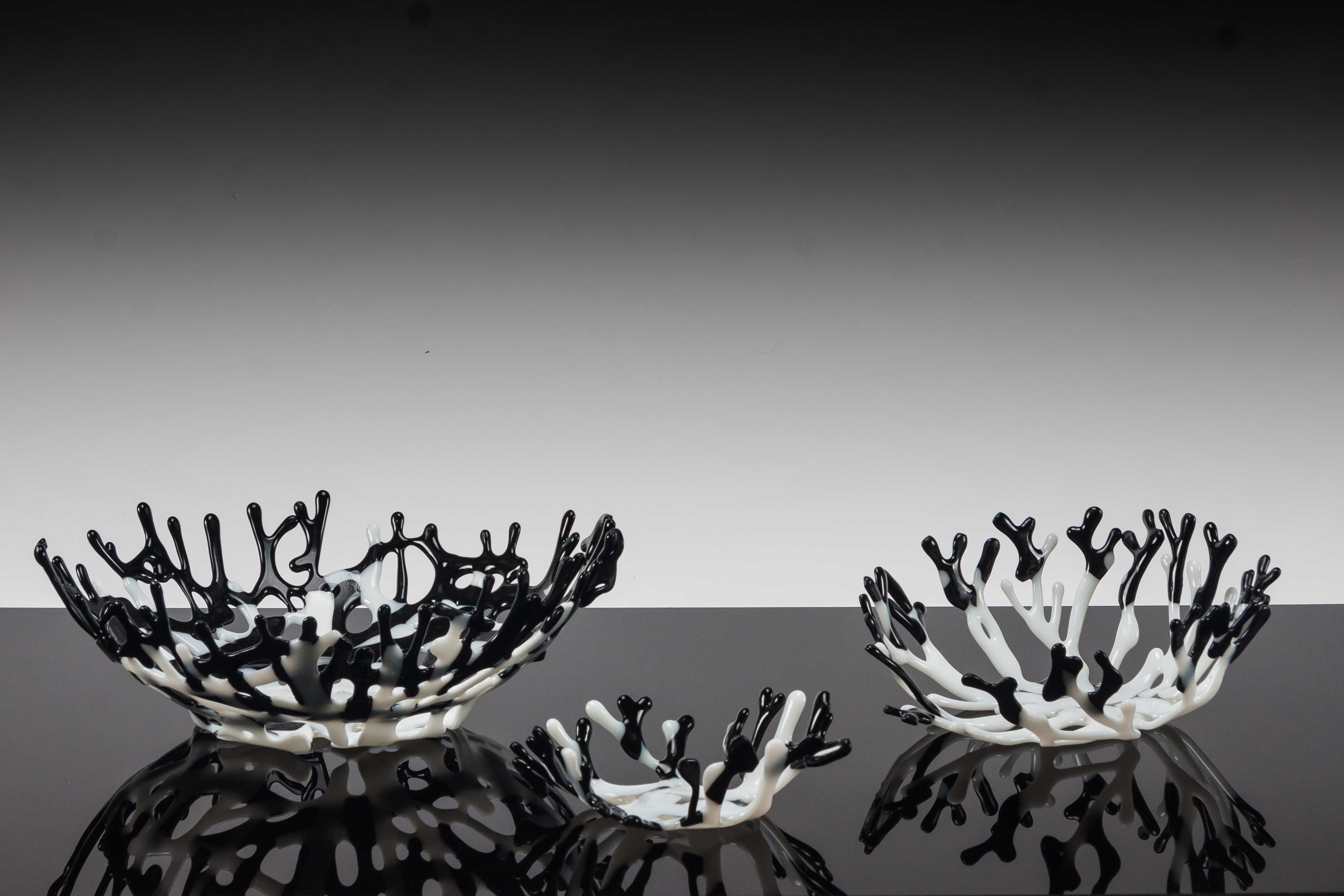 Black and White Coral Bowl Set